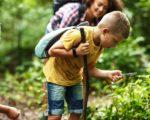 Pierwsze drzewa pokrywają się kwieciem, w ogródkach i w parkach robi się kolorowo, bociany zasiedlają gniazda, a lasy zaczynają tętnić życiem – 10 pomysłów na majówkę bliżej natury.