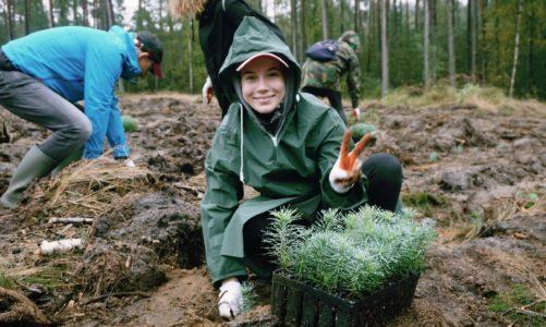 Dzień Zrównoważonego Piękna – Fryzjerzy Davines mogą zasadzić drzewo w Twoim imieniu
